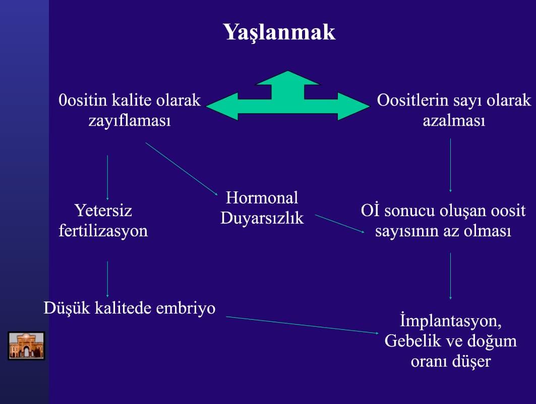 Yaşlanmak - Prof. Dr. Hasan Serdaroğlu